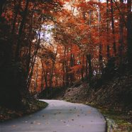 The Spirit of Autumn and Higher Education